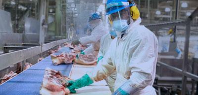 Equipos de protección personal básicos para la industria alimentaria
