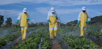 Elementos de protección personal para agricultor